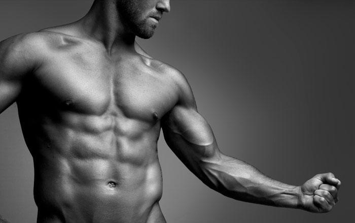 musculoimagen